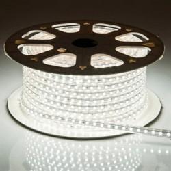 Tiras LED 5050/50M 6000K