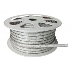 Tiras LED 5050 RGB 12MM DE ANCHURA 12W POR METRO