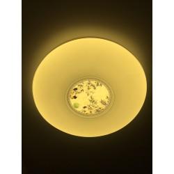 Plafón LED 72w C941 con regulabre y Cambiar la Temperatura de Color con Control Remoto Lámpara de Techo